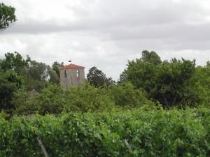 clocher + vignes + feuilles 2
